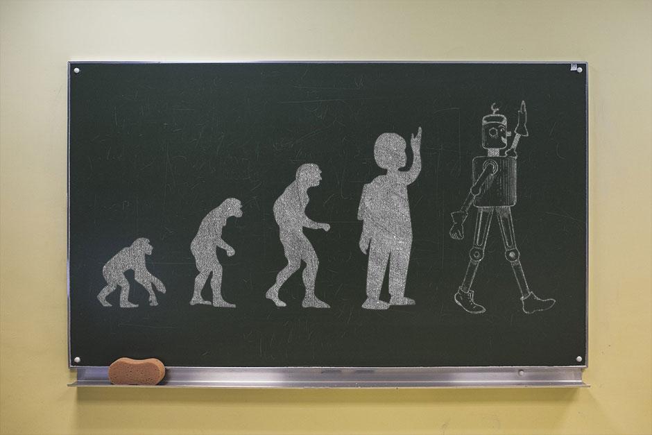 Tafelbild Evolution Schüler
